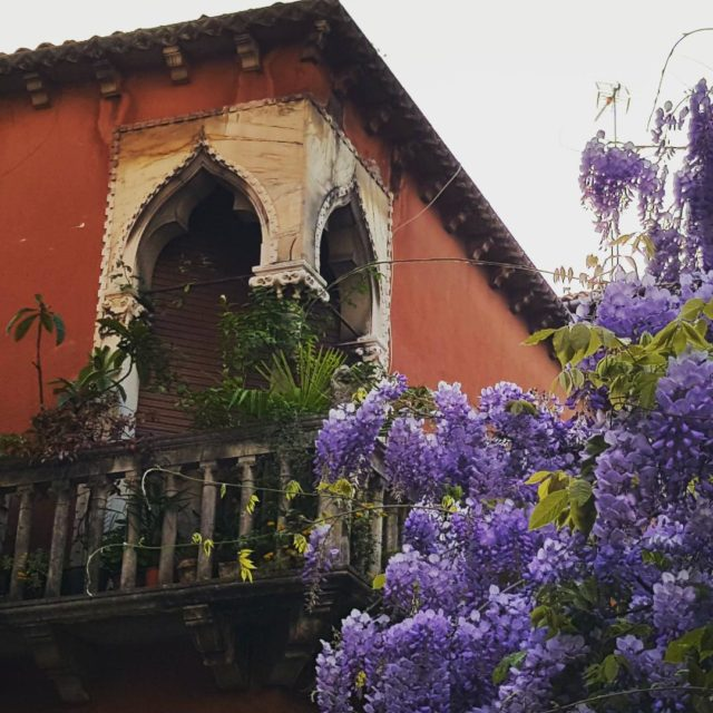 Theres no place like venice venezia venedig venise venecia springhellip