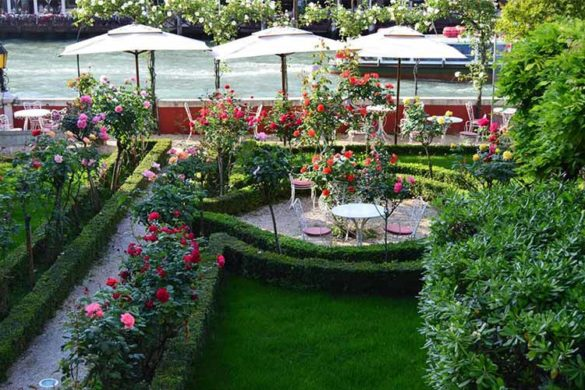 The garden of Ca' Nigra Lagoon Resort