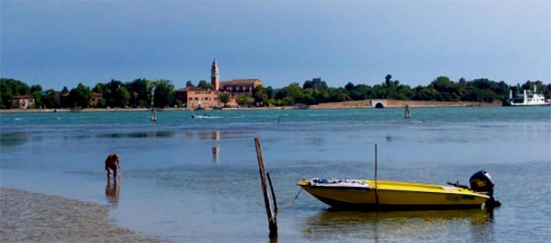 Island of Certosa