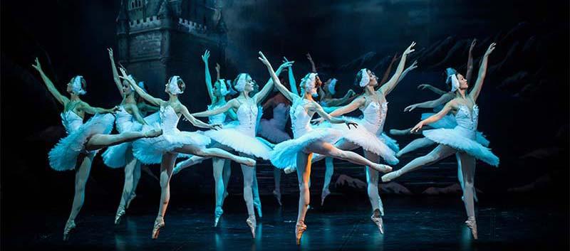 The Swan Lake at Teatro Goldoni