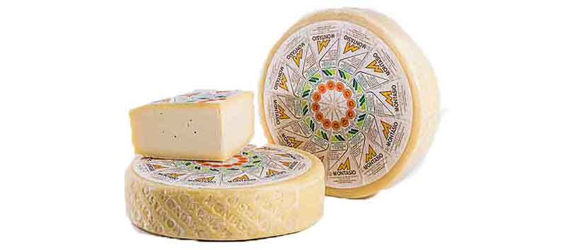 Traditional Montasio cheese